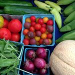Cape Charles Farmers Market to open May 1st