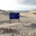 Wetlands Board Gropes for Answers to Beach Management