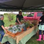 Cape Charles Farmers Market Schedule Change