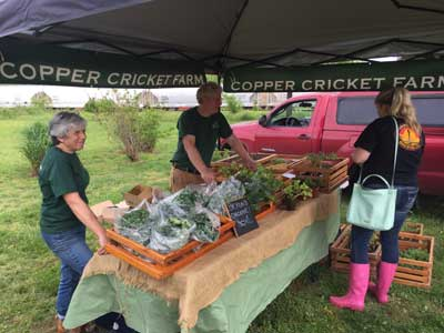 Cape Charles Farmers Market (Photo Karen Gay)