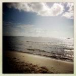 Wetlands and Coastal Dune Board needs your input on Beach Management Plan